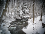 New Hampshire Stream on New Years Day